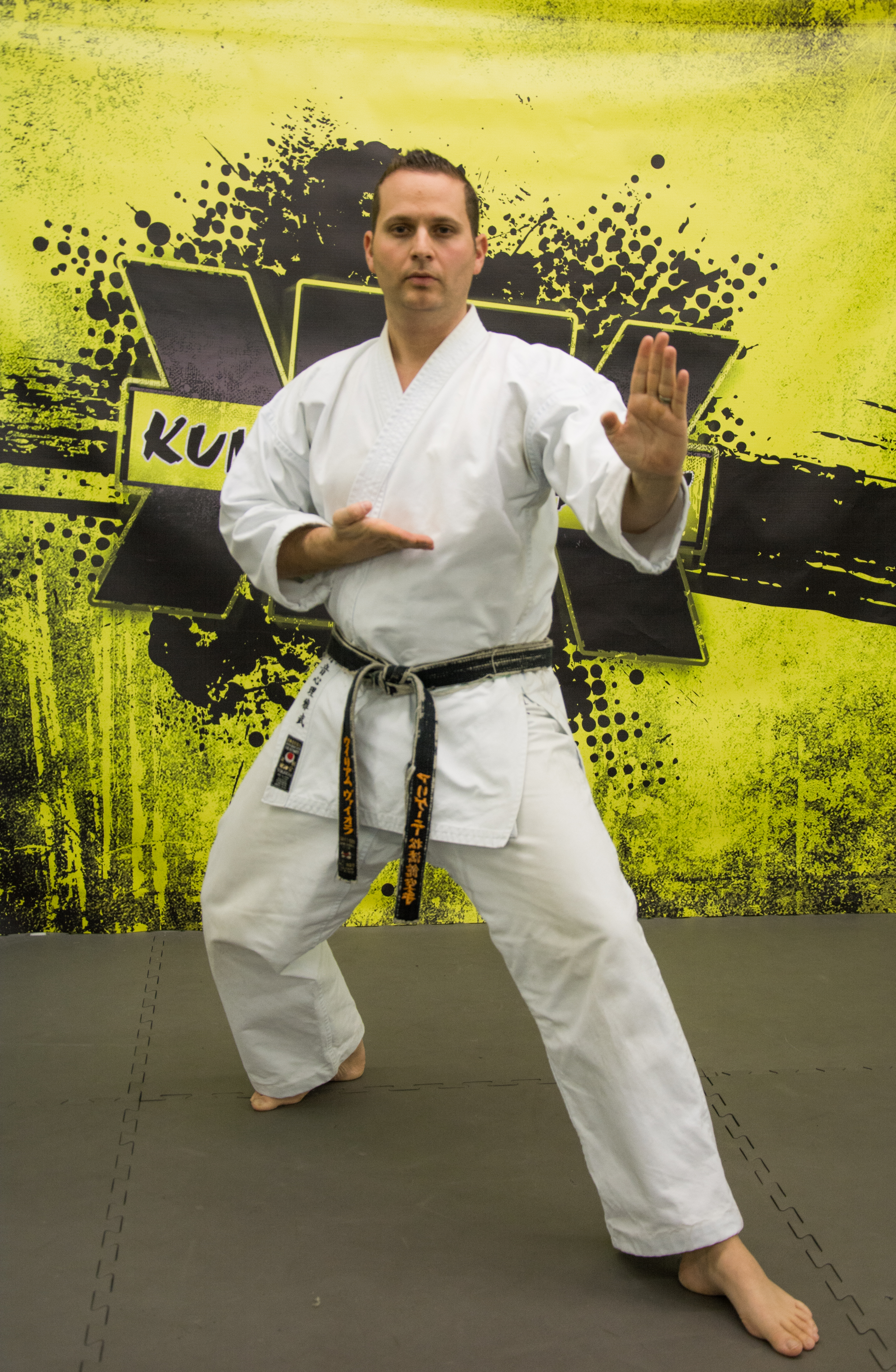 bill viola jr karate